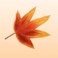 Jesenné ozdoby