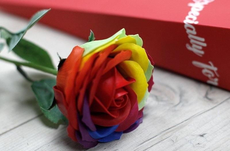 mydlová ruža