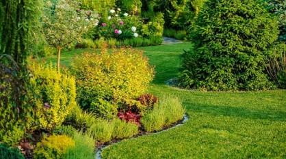 Tipy pre augustovú záhradu