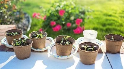 Jarná terasa – inšpiratívne tipy na jej spestrenie